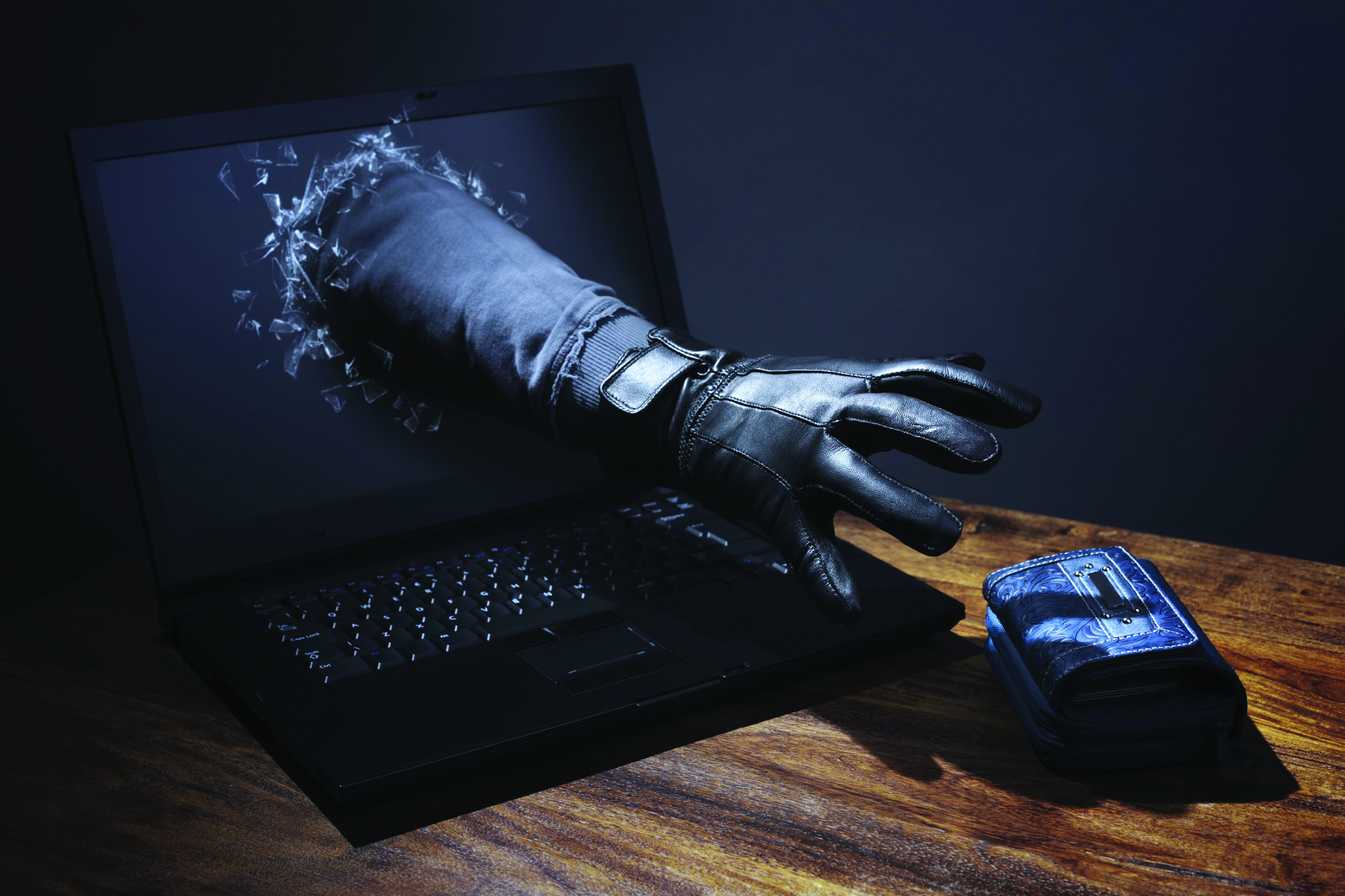 Dedicated laws needed to address growing spectre of cybercrime
