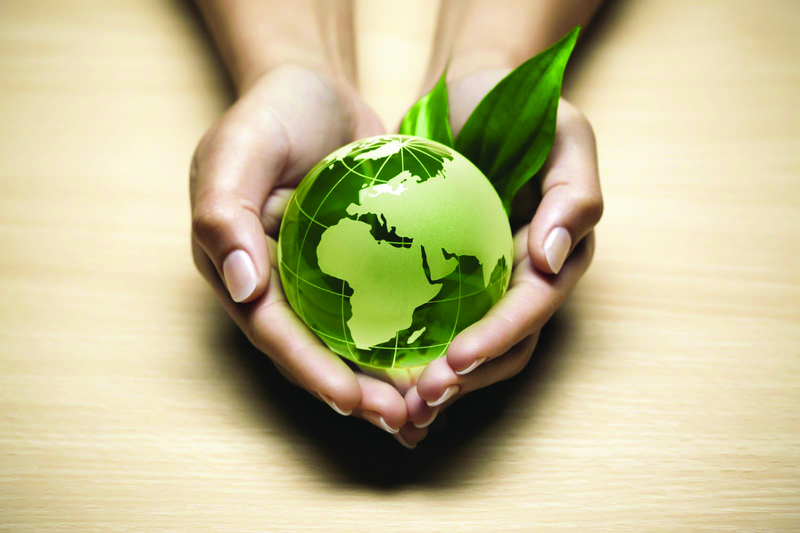 How to get investors to save the planet
