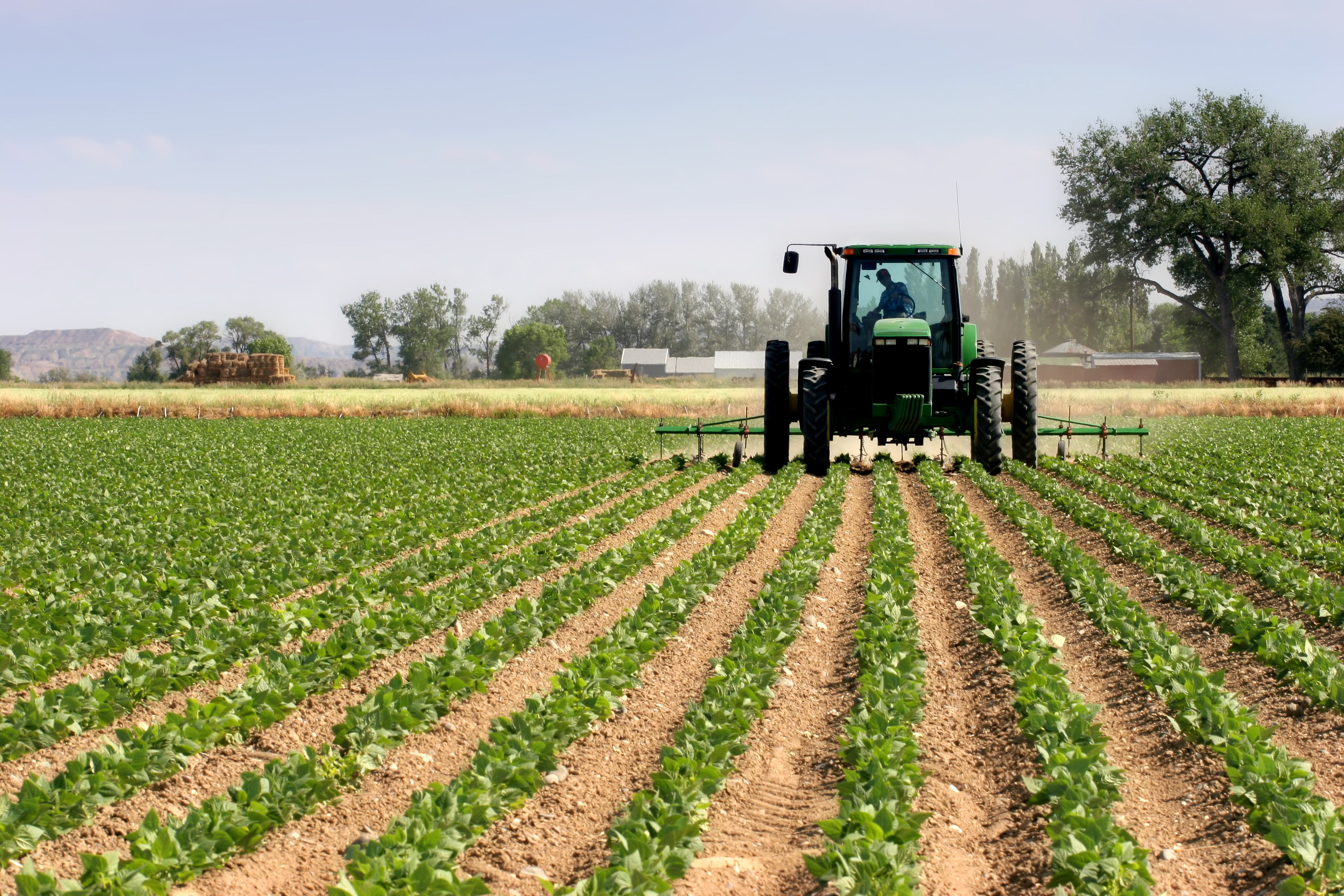 Agriculture is our gateway to industrialisation