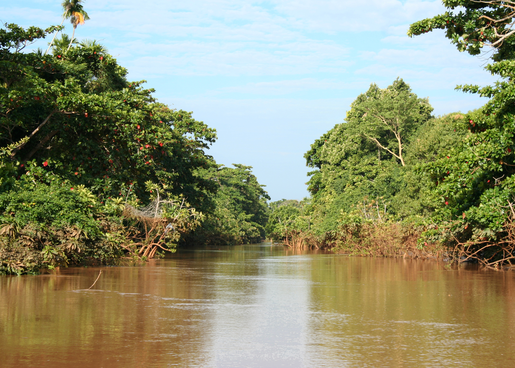 Climate change may boost rain in Kenyan river basin – scientists