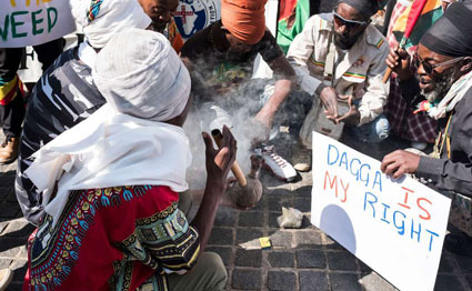 Legal tremors from S.Africa's bhang ruling