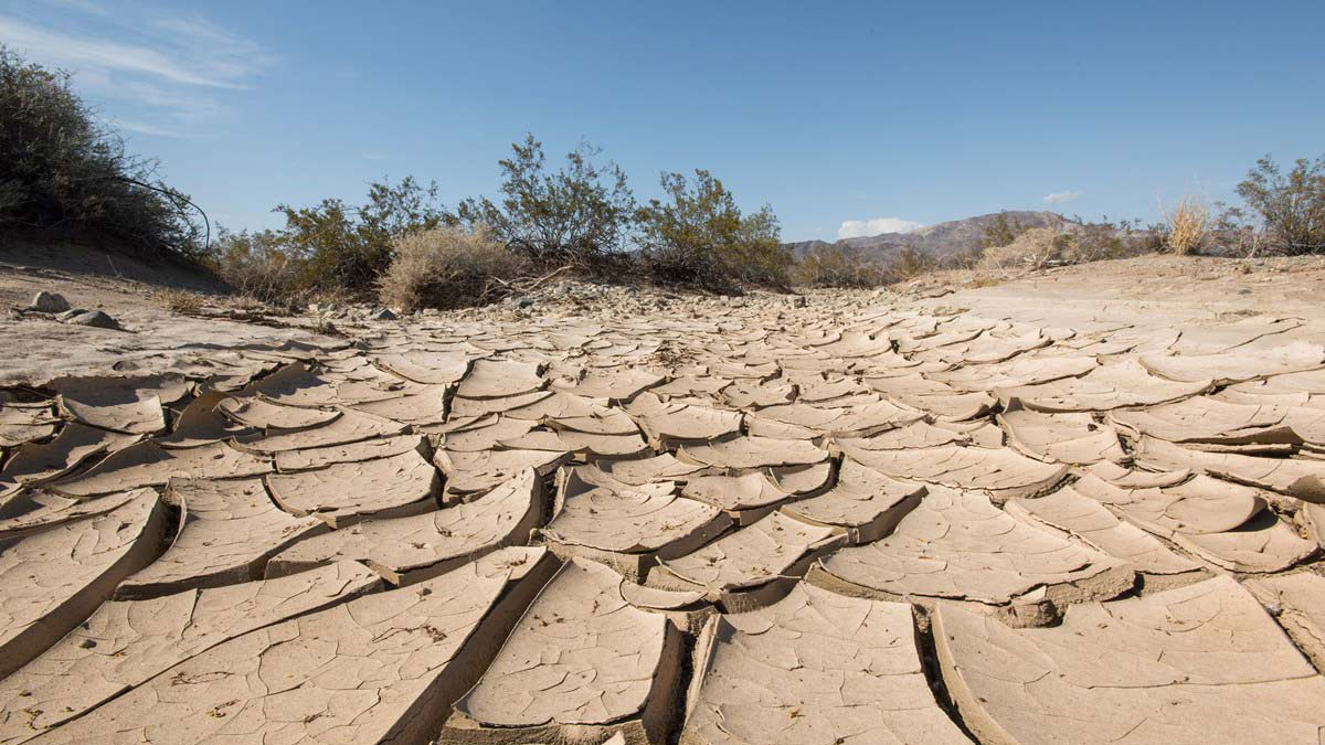 Climate change: 12 years to save the planet? Make that 18 months…