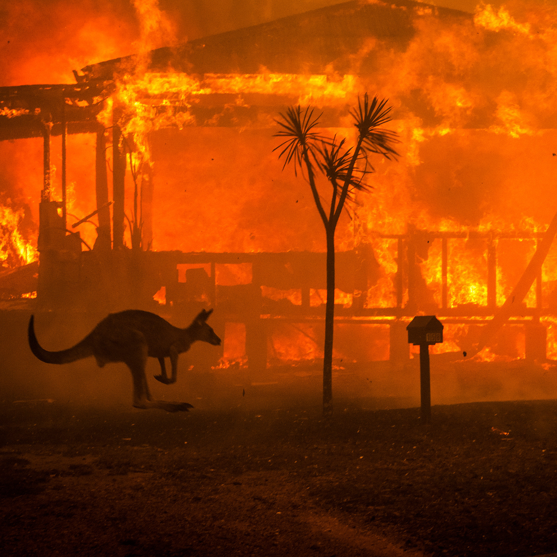 The unexpected link between Kenya's unusual torrential flooding and Australia's bushfires