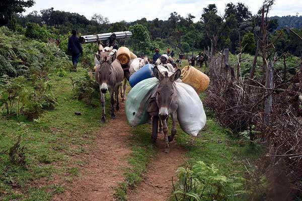 Build capacities to promote environmental justice in Kenya