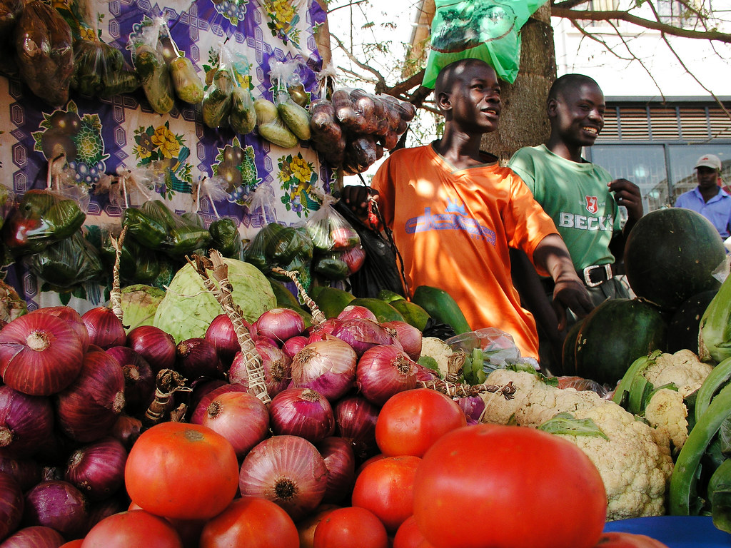 Africa has a growing food security problem: why it can't be fixed without proper data