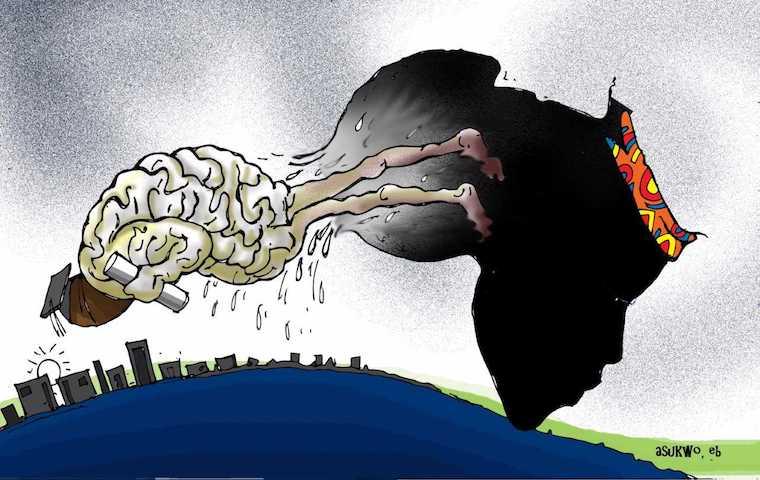 The idea of African brain drain is harmful. Let's retire it